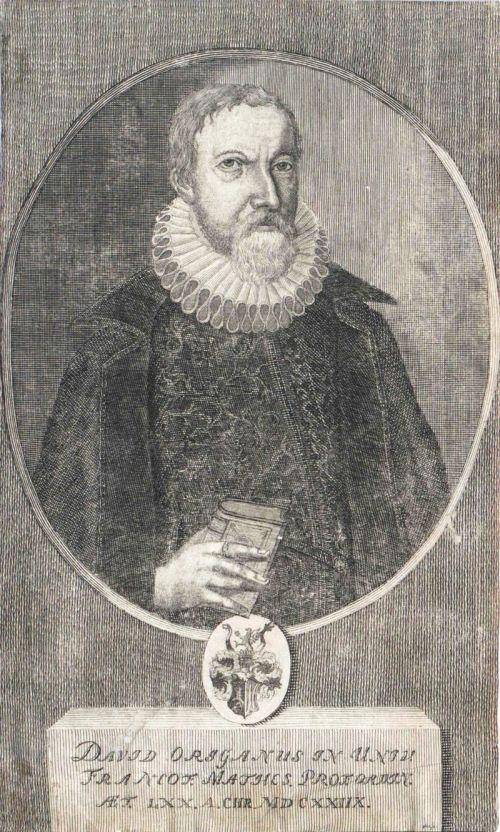 DavidOriganus