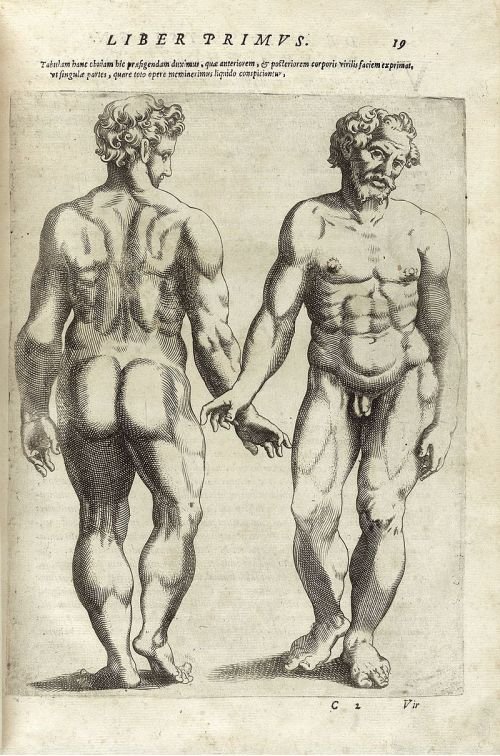 800px-De_humana_physiognomonia_libri_IIII_-_NLM_NIH_-_page_19
