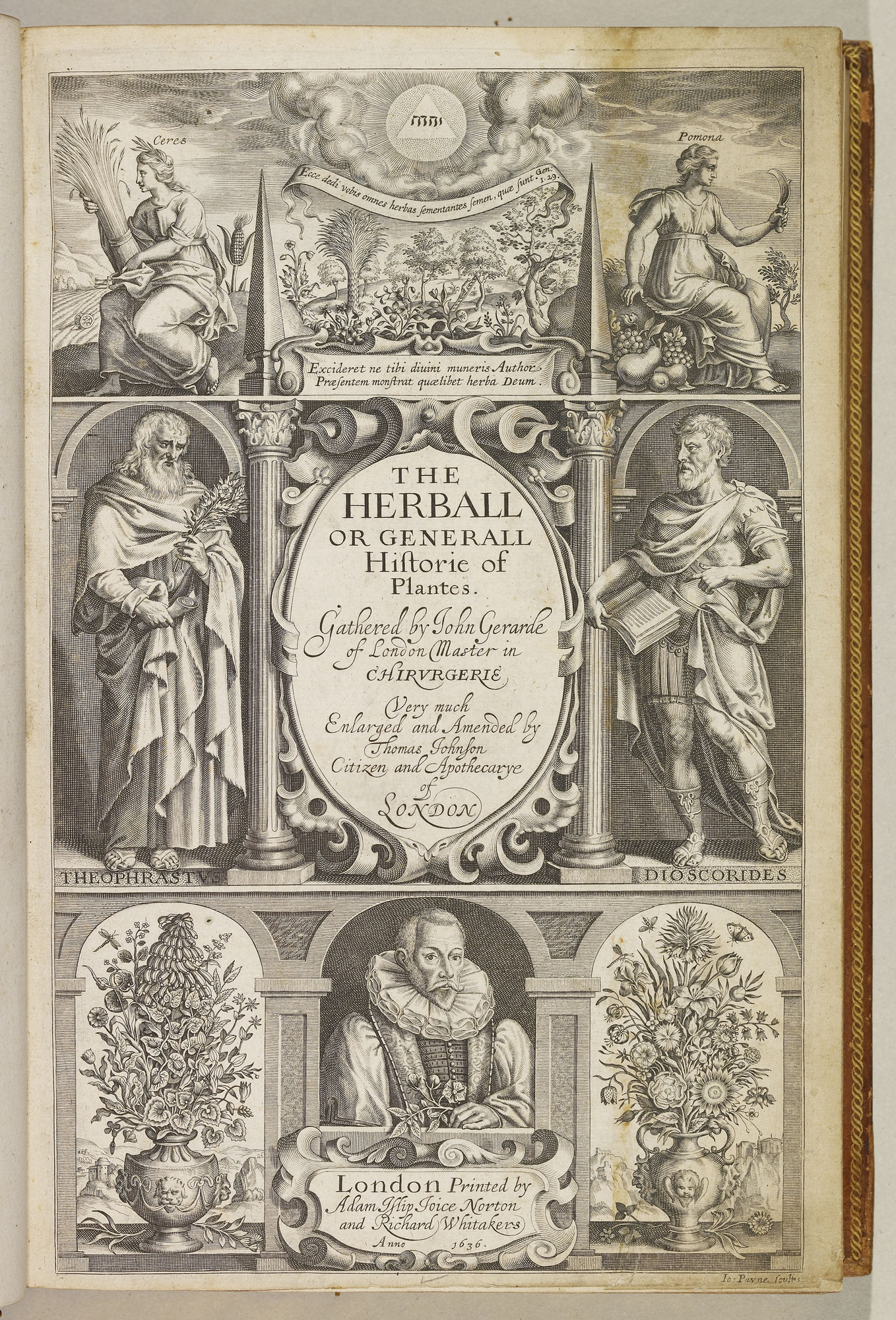 The Herball, or, Generall historie of plantes / by John Gerarde