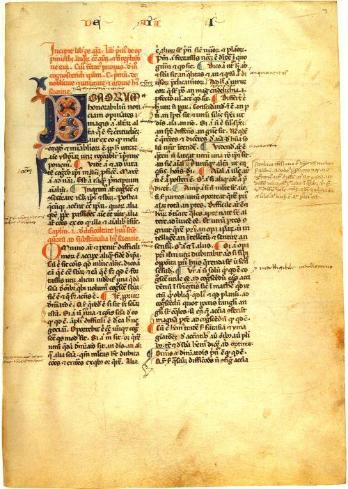 Aristotle,_De_anima,_Vaticanus_Palatinus_latinus_1033